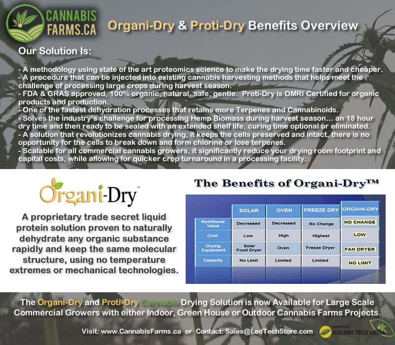 Organi-Dry Benefits Overview